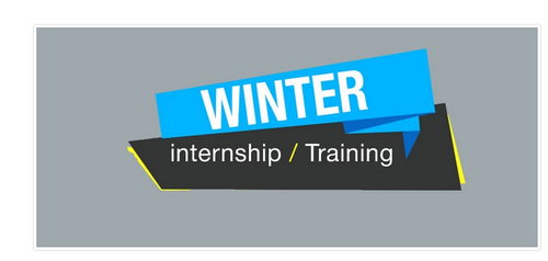Winter Internship 2019