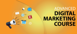 Digital Marketing institute in Rajendra  Place