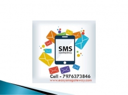 India #1 Bulk SMS Provider | Low-Cost, High Delivery, Instant Activation